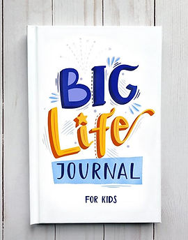 big_life_journal_second_edition.progress