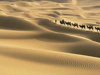 Caravana de camellos - cuento Sufi