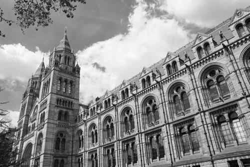"""Natural History Museum"" London"