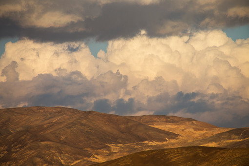 """""""Cerro de la niebla"""" II Región"""