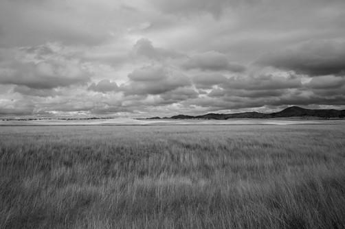 """San Rafael Valley"" Patagonia, AZ"