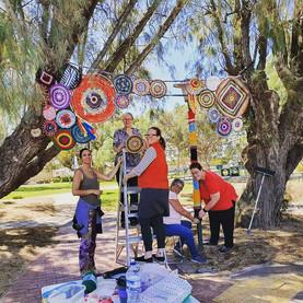 Magic Tree Yarn Bombing Hillcrest Commun