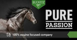 Pure Passion Buckeye