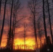 Tonights fire sky is breathtaking.jpg