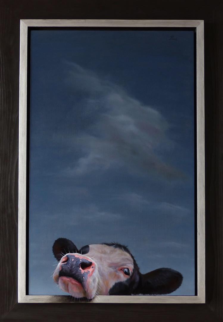 391. Happy Cloud.              (38 x 63