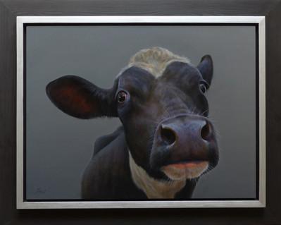 374. Zwart kalf 5.   (46 x 61 cm).jpg