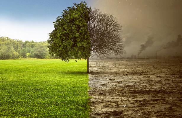 Глобальные изменения климата планеты