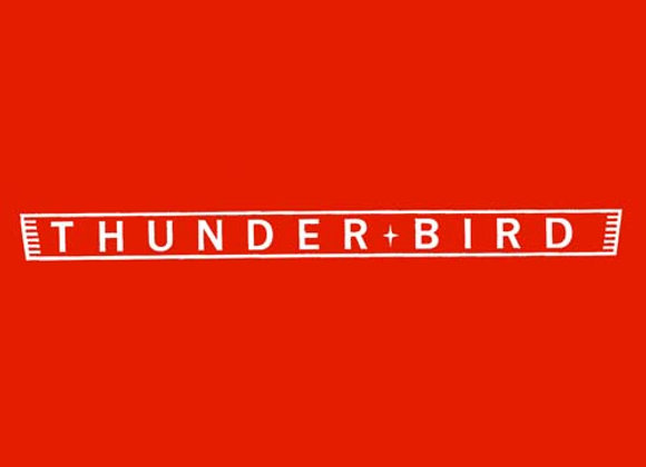 Thunder Bird Wagon Decals
