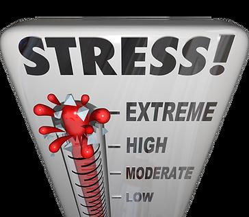 Gestão STRESS | BEWELL