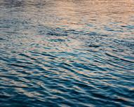 20_6330_Wasser.jpg