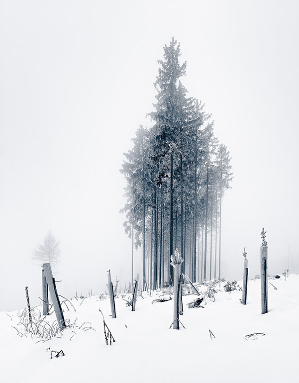 Upright_Rokk_Eckart-Bartnik_01.jpg