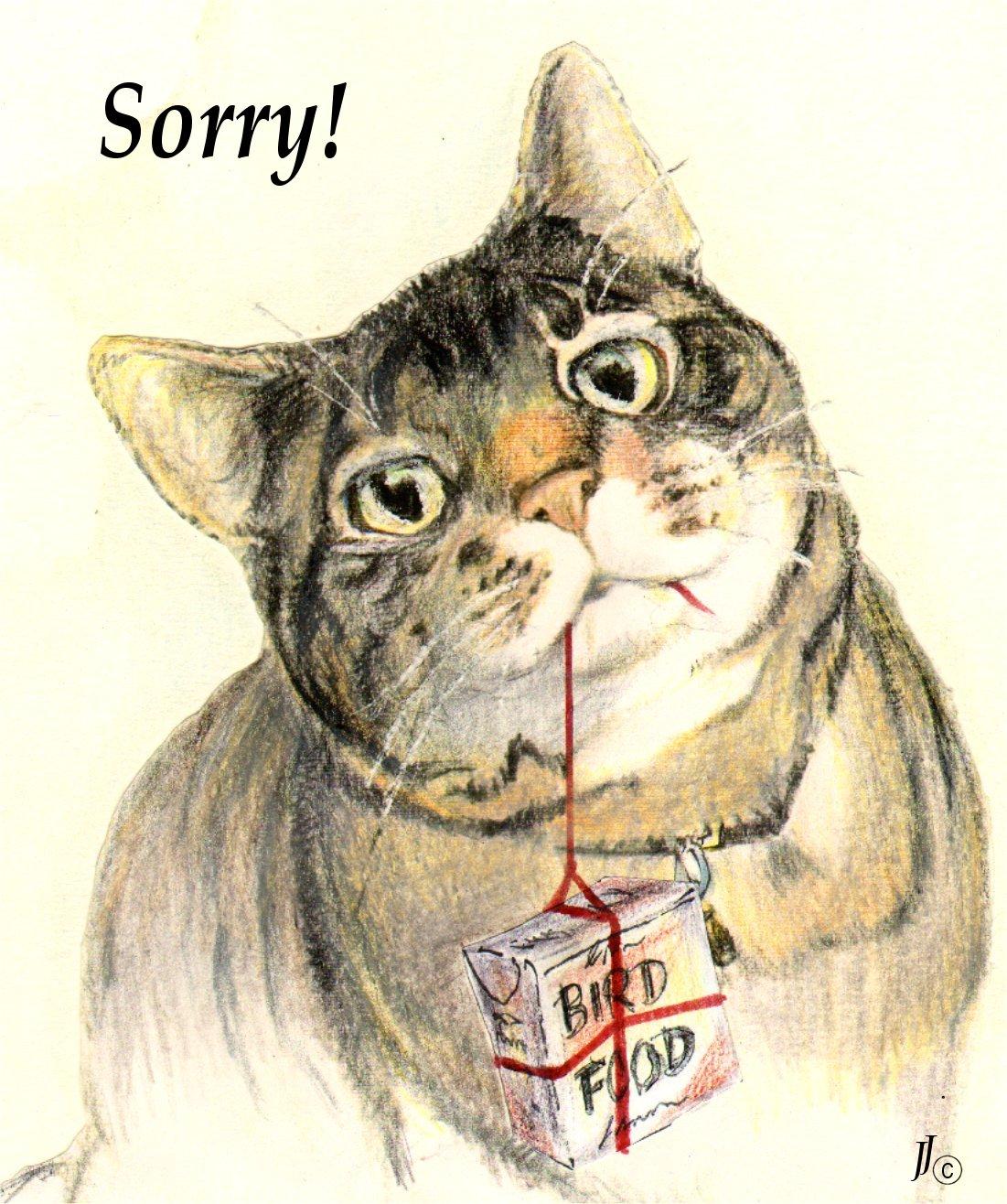 giving cat.jpg