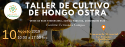 taller de cultivo de Hongo Ostra (1)