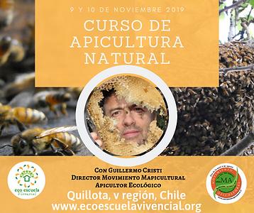 Taller apicultura (1).png