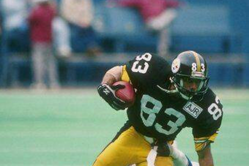 1989 Pittsburgh Steelers AFC Divisional Season on DVD - Louis Lipps, Rod Woodson