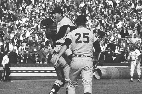1968 World Series on DVD - Tigers Vs. Cardinals - Mickey Lolich - Bob Gibson