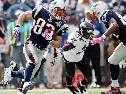 2009 New England Patriots Wildcard Season on DVD - Wes Welker, Tom Brady