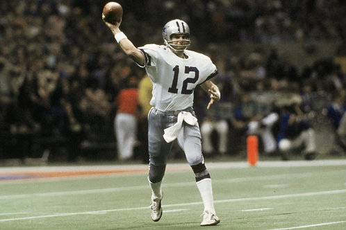 1979 Dallas Cowboys NFC Divisional Season on DVD - Roger Staubach Final Season