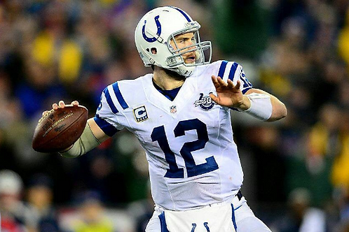 2013 Indianapolis Colts AFC Divisional Playoff Season on DVD - Andrew Luck