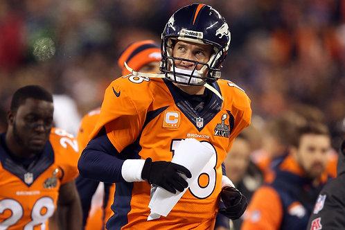 2013 Denver Broncos Super Bowl XLVIII 48 Season on DVD - Peyton Manning