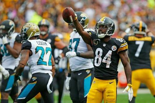 2017 Pittsburgh Steelers AFC Divisional Season on DVD - Antonio Brown