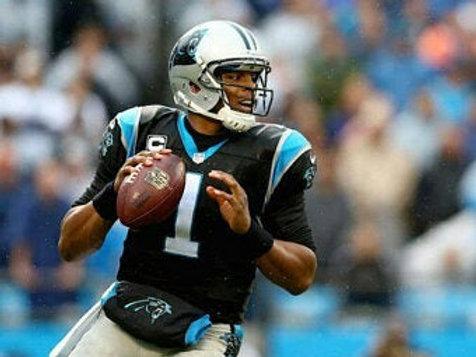 2015 Carolina Panthers Super Bowl 50 Season on DVD - Cam Newton