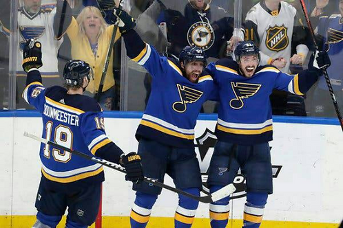 2019 St. Louis Blues NHL Playoffs & Finals Games On DVD  - All 16 Wins Only