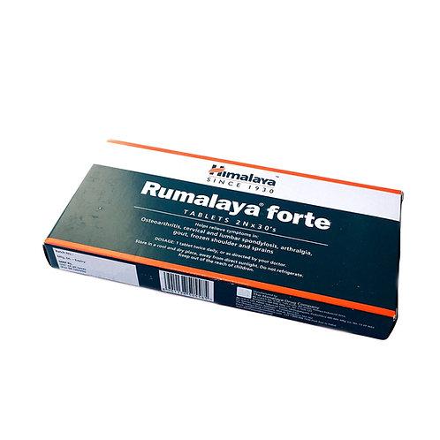 Румалайя Форте (Хималайя)