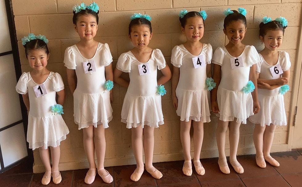 Glen Waverley Ballet, Glen Waverley Dance, Wheelers Hill Ballet, Wheelers Hill Dance, MOunt Waverley Ballet, Mount Waverley Dance, dance classes for kids, ballet classes for kids,