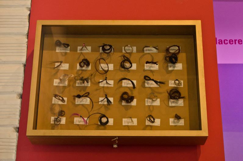 Taxonomy of hair