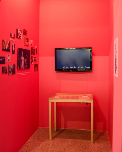 Fembra placere installation at Museum of Antioquia University