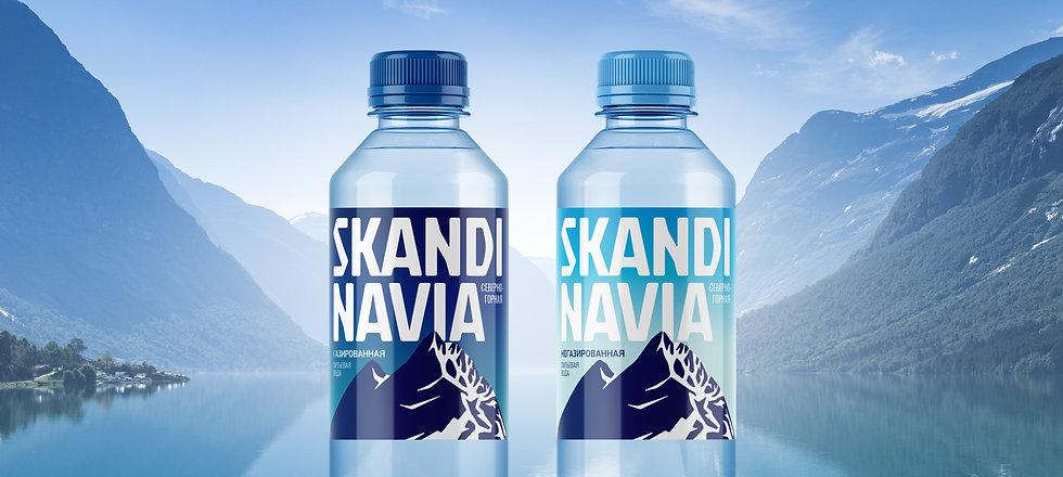 Дизайн этикетки Skandinavia