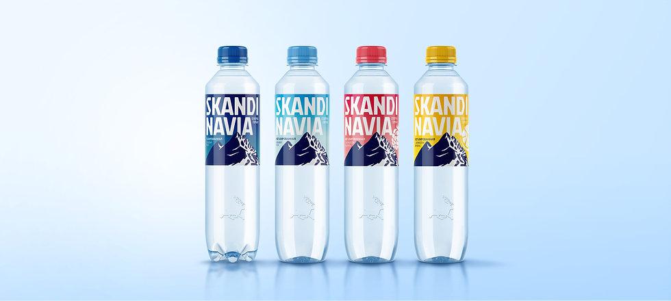 Дизайн упаковки Skandinavia