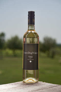 THREE DOG WINERY WINE VIDAL_0061_LR.jpg