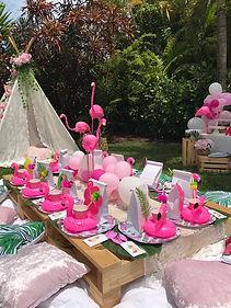 Flamingo Picnic