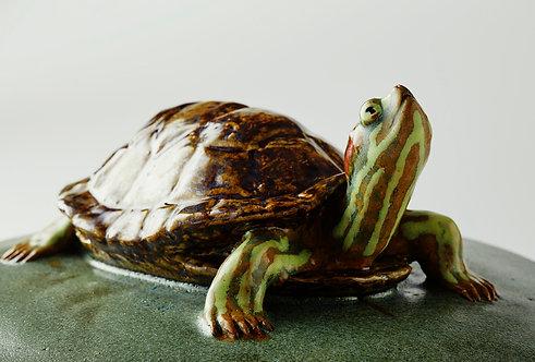 Turtle Vessel