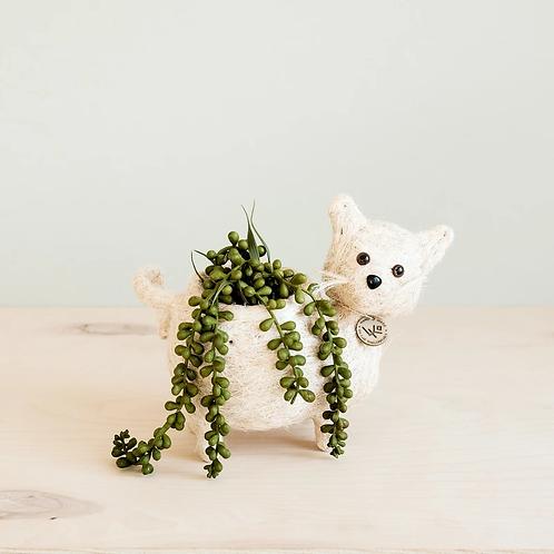 Baby Cat Planter
