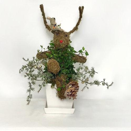Ivy Reindeer