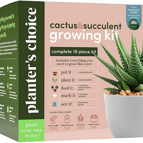 Cactus and Succulent Growing Kit
