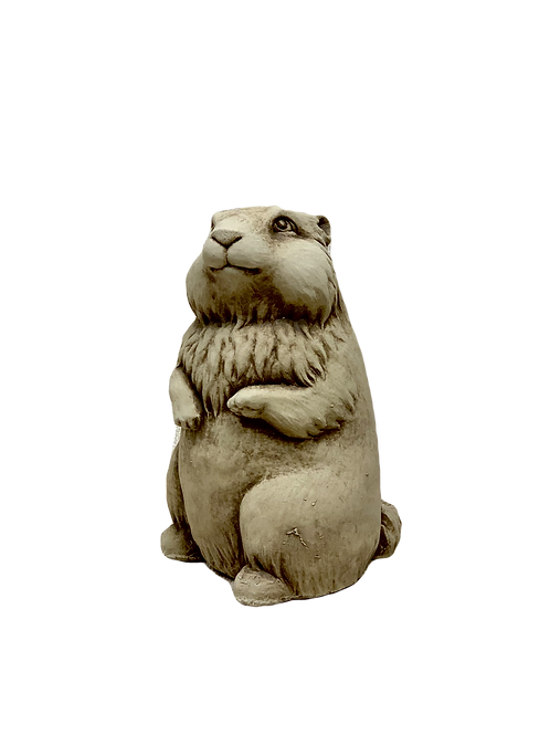 """Gordy Groundhog"" by Carruth Studio"