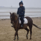 Millie and Lennon at Camber