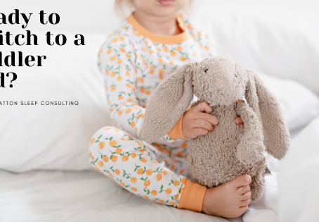 Ready to switch to a toddler bed?