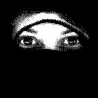 Cara a cara com uma Ninja