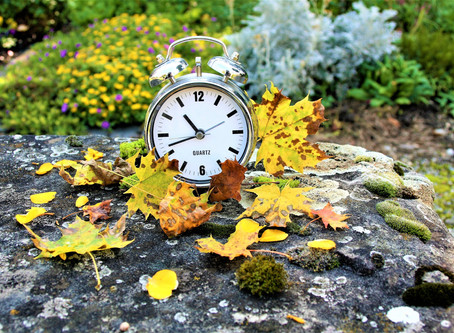 "Daylight Savings Time: ""Falling Back"" Gracefully"