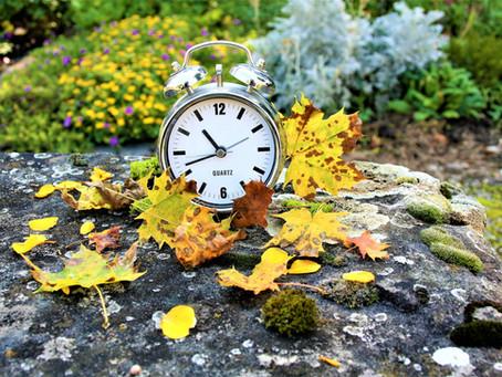 "Daylight Savings Time: ""Falling Back"" Gracefully"