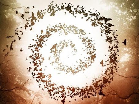 HalloSCREAM! #10: Spiral