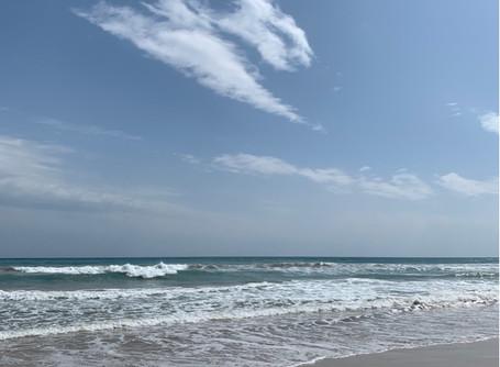 Море. Сила. Стихия. Зов