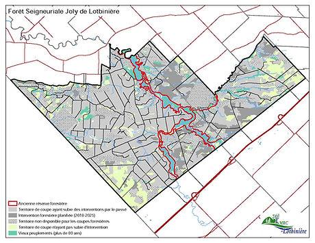 Cartes_Forêt_Seigneuriale_V2_Page_7.jpg