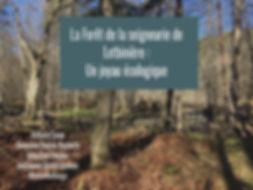 2._Un_joyau_écologique__La_Forêt_de_la_s