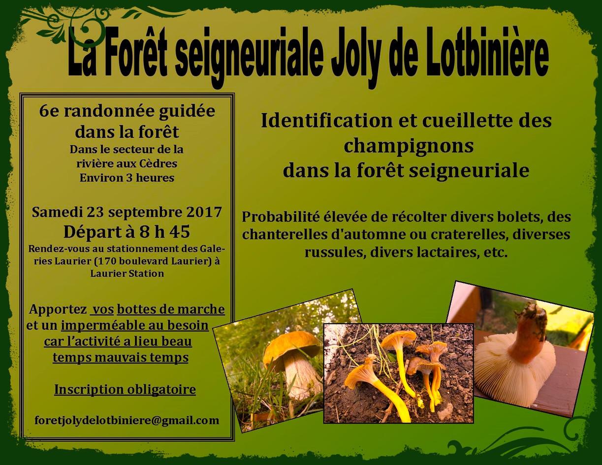 Affiche_pour_la_randonnée_aux_champignon